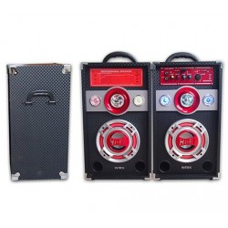 "Set boxe active 6.5"" karaoke, MP3 USB/SD"